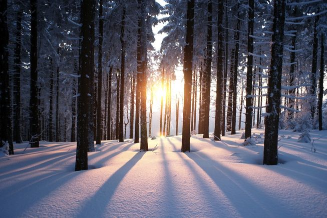 winter-solstice-facts-jpg-653x0_q80_crop-smart